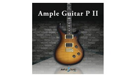【D2R】AmpleSound AMPLE GUITAR P II