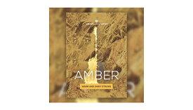 【D2R】UJAM VIRTUAL GUITARIST - AMBER