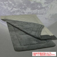 プラチナウェーブ寝具宇宙(SORA)肌布団シングルサイズ