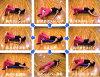 LPN 真正拉伸杆 EX 光綠色、 粉紅色、 黃色、 象牙練習 DVD 和指令手冊開始書,概念與拉伸 Paul 鷹