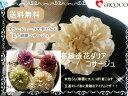 Imgrc0069008838