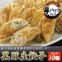黒豚生餃子(4パック入り)