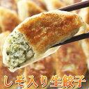 しそ入り生餃子 餃子 ぎょうざ ギョーザ 愛知県産しそ使用 しそを刻み込み香り豊かな味わいが楽しめます 化学調味料不…