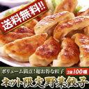 【送料無料】【業務用】ネット限定野菜餃子