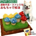 おやつ付き 犬 ノーズワーク おもちゃ きのこ 知育 ペットおもちゃ 訓練毛布 猫 ペット マット ト嗅覚訓練マット 分離…