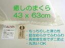 新感覚超もっちもちの癒しのまくら43x63cm 日本製