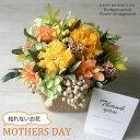 母の日 プレゼント カーネーション 花 あじさい 枯れない ギフト 鉢植え 贈り物 花 アレンジ アレンジメント プリザー…