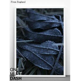 【アウトレット】【ONE MUST DASH】ワンマストダッシュ イギリス frost 葉 リーフ モダン シンプル カフェ モノクロ ポスター アートプリント 297x420 A3cm インテリア 北欧