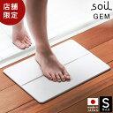 珪藻土バスマット 日本製 soil GEM ソイル Sサイズ 珪藻土マット バスマット 珪藻土 ...