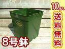 【植木鉢】8号プラスチック角鉢 10個セット【ガーデニング用品/バラ栽培に/植え替えに】【排水性や通気性にも配慮】【送料無料】