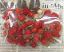 ストロベリーフィールド(千日紅)ヘッド大袋