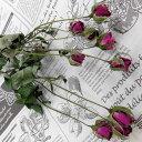 ドライフラワースモールローズワイン10輪薔薇