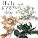 【大人気につき新色追加!全4色】ヒイラギ プリザーブドフラワー (ゴールド・プラチナ・グリーン・ウォッシュホワイト)クリスマスリースやツリーなどの飾りつけ、ハーバリウムやスワッグなどのフラマテ花材