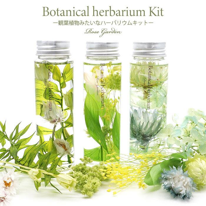 ボタニカルハーバリウムショート3本分キット‐観葉植物植物みたいなハーバリウム‐