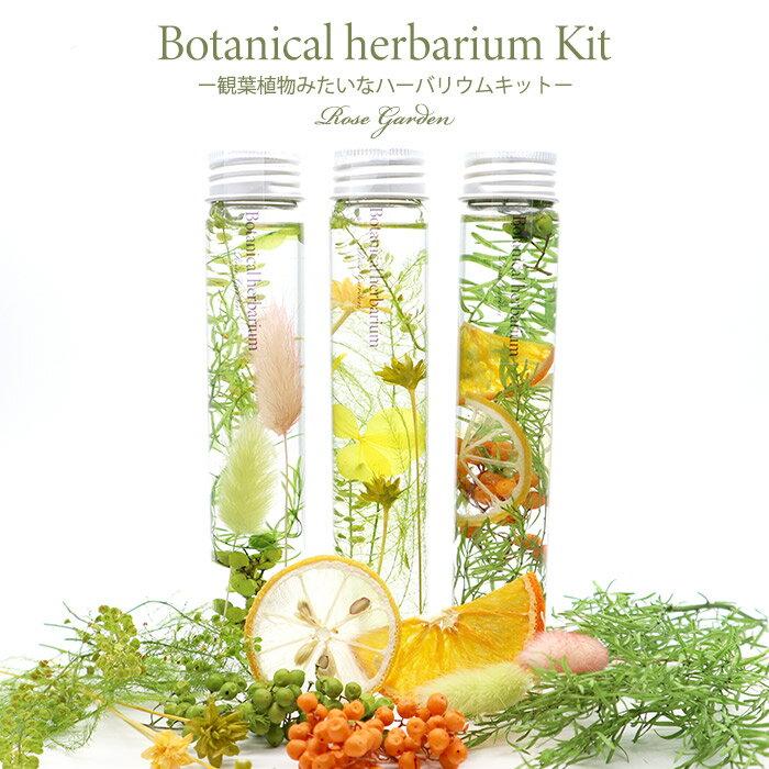 ボタニカルハーバリウムトール3本分キット‐観葉植物植物みたいなハーバリウム‐