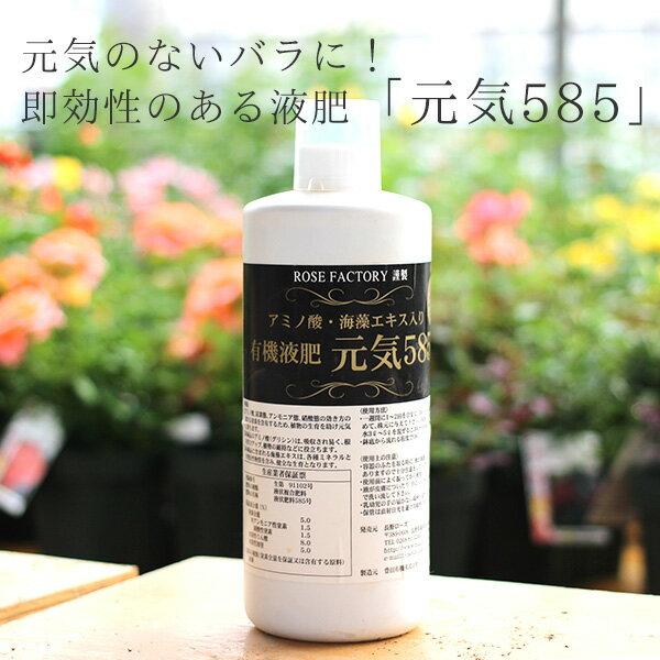 バラ専用有機液肥 元気585 1000cc by ROSE FACTORY(元気くん)/バラを元気に!有機成分にこだわった即効性のある液肥です