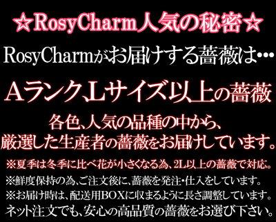 ロージーチャームの薔薇