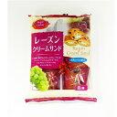 山内製菓 レーズンクリームサンド 8個×3袋