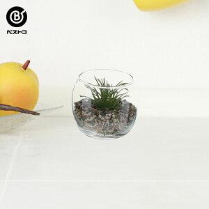 フェイク テラリウムグリーン グラス丸M 3 | 観葉植物 壁掛け 壁かけ フェイク ミニ 人工観葉植物 造花 多肉植物 ガラス ガラス鉢 小さい インテリアグリーン おしゃれ プレゼント ギフト コ