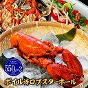 【期間限定6499円】ロブスター オマール海老ボイル済 550g×2 海老エビ 海産物 海鮮 食べ物洋食以外にも和食中華等幅…