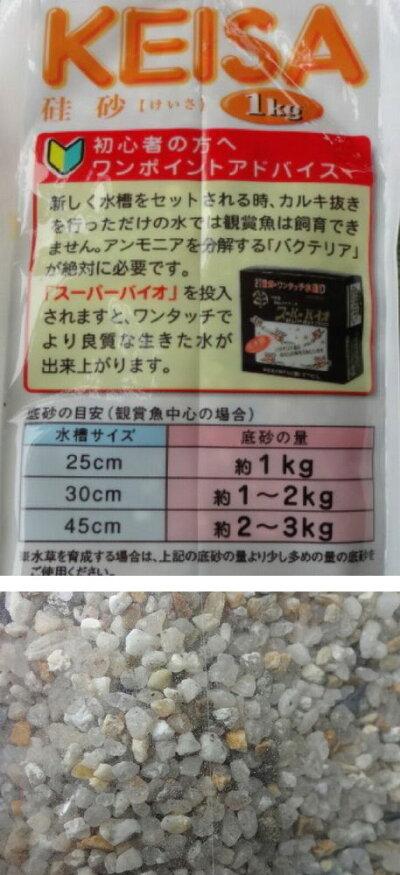 SDシンセーメダカの砂1kgシンセー産業【あす楽_土曜営業】【s-mail40】