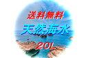 【RCP】天然海水■20L専用パック■サンゴ・魚イキイキ■ 【最安値挑戦】 ■