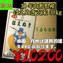 29年山形県産はえぬき玄米 30kg