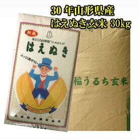 送料無料 30年 山形県産 はえぬき 玄米 30kg 米