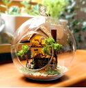お洒落 球体 ガラス ミニチュア ドールハウス 山小屋 ログハウス