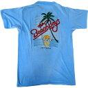 【SALE】【大幅値下げ】【BEACH BOYS】ビーチ・ボーイズビンテージロックTシャツ【中古】