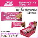 DNS WOMEN ソイフィット プロテインバー 40g 12本入り チョコレートナッツ/レーズンクランベリー