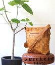革編み込み メッシュレザーバッグ 本革鞄 軽い 柔らかい 革 バッグ レザーショルダーバッグ 牛革 (48460) / ズッケロフィラート zucche…