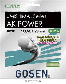 GOSEN(ゴーセン) ウミシマ AKパワー 16 UMISHIMA AK POWER 16 ホワイト TS712W 1805 【メンズ】【レディース】 テニス ガット(国内)