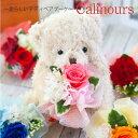 くま ぬいぐるみ プリザーブドフラワー 『Calinours カリヌゥス』 誕生日 結婚祝い 発表会 卒業祝い ブリザードフラワ…