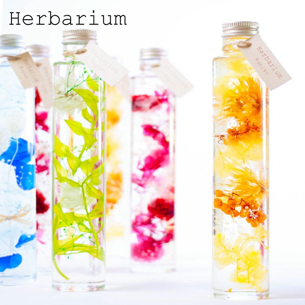 プリザーブドフラワー 『herbarium ハーバリウム』【花 フラワー 誕生日 結婚祝い 結婚記念日 プレゼント ギフト】【送料無料】【コンビニ受取可能】【あす楽対応】