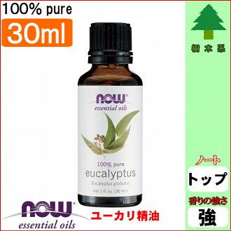 桉树精油 [30 毫升] (桉树油由香里现在精油香气干草措施玩具驱蚊器的驱蚊器室内干气味)