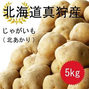 今年の10月収穫分予約受付ます!! 北海道真狩産 じゃがいも 北あかり 5kg 送料無料!!