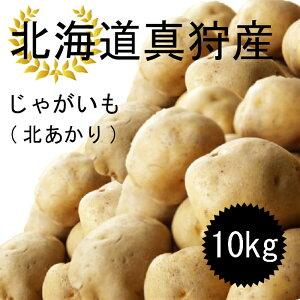 今年の10月収穫分予約受付ます!! 北海道 真狩産 じゃがいも 北あかり 10kg 送料無料!!