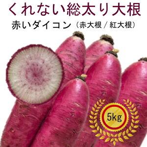 美しい紅肉が映える大根 数量限定 北海道 真狩産 赤大根 クレナイソウブトリ大根 5kg 送料無料