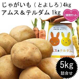 北海道 野菜 じゃがいも とよしろ アムステルダム 詰め合わせセット 玉手農場 5kg 送料無料 ポテトチップスプレゼント!!