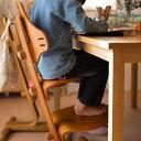 【10%OFF+2倍】【組立発送】リボ社 フレキシットチェア・ジュニア 子供 椅子 ダイニング テーブルチェア キッズチェア イス 子ども クッション 高さ調整 食事 ハイチェア 北欧 木製チェア 前傾椅子