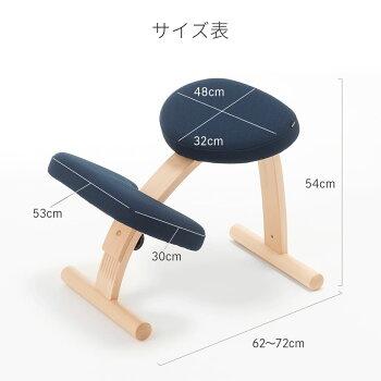 バランスイージー学習椅子おすすめ学習チェア学習イス子供椅子姿勢姿勢矯正椅子勉強椅子姿勢が良くなる椅子サカモトハウス