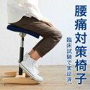 【あす楽】 バランス シナジー バランスチェア 大人 | 腰痛 椅子 腰痛椅子 体幹 鍛える 姿勢が良くなる 猫背 姿勢矯正…