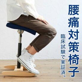 バランス シナジー(組立式) 在宅勤務 椅子 在宅ワーク チェア バランスチェア 大人 | 腰痛 対策 椅子 腰痛椅子 体幹 鍛える 姿勢が良くなる 椅子 姿勢 対策 猫背 矯正 いす オフィスチェア イス 日本製 高さ調整 120度座り