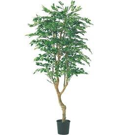 人工観葉植物 大型 光触媒スプレープレゼント 180cm フィカスツリー(ナチュラルトランク/2690) [LETR7592]フェイク グリーン 造花 インテリア おしゃれ 代引決済不可