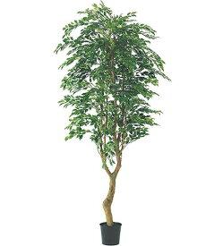 人口観葉植物 大型 210cm フィカスツリー(ナチュラルトランク) 造花 観葉植物 [LETR7593] フェイク グリーン インテリア おしゃれ 代引決済不可