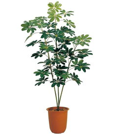 150cm カポックツリー 造花 フラワー 観葉植物 [LETR7205]【フェイク グリーン インテリア 人口観葉植物】 代引決済不可
