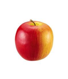 80mm アップル 食品サンプル フルーツ 果物 [DIFV71001]【りんご リンゴ フェイク フルーツ 商品 サンプル 作り物 レプリカ モチーフ】