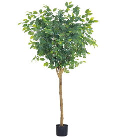 人口観葉植物 大型 150cm ラウンドフィカスツリー(ナチュラルトランク) 造花 観葉植物 [LETR7640] フェイク グリーン インテリア おしゃれ 代引決済不可