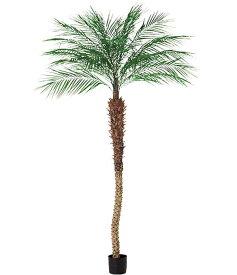 人工観葉植物 大型 光触媒スプレープレゼント 300cm フェニックスパームツリー [LETR7652]フェイク グリーン 造花 インテリア おしゃれ 代引決済不可